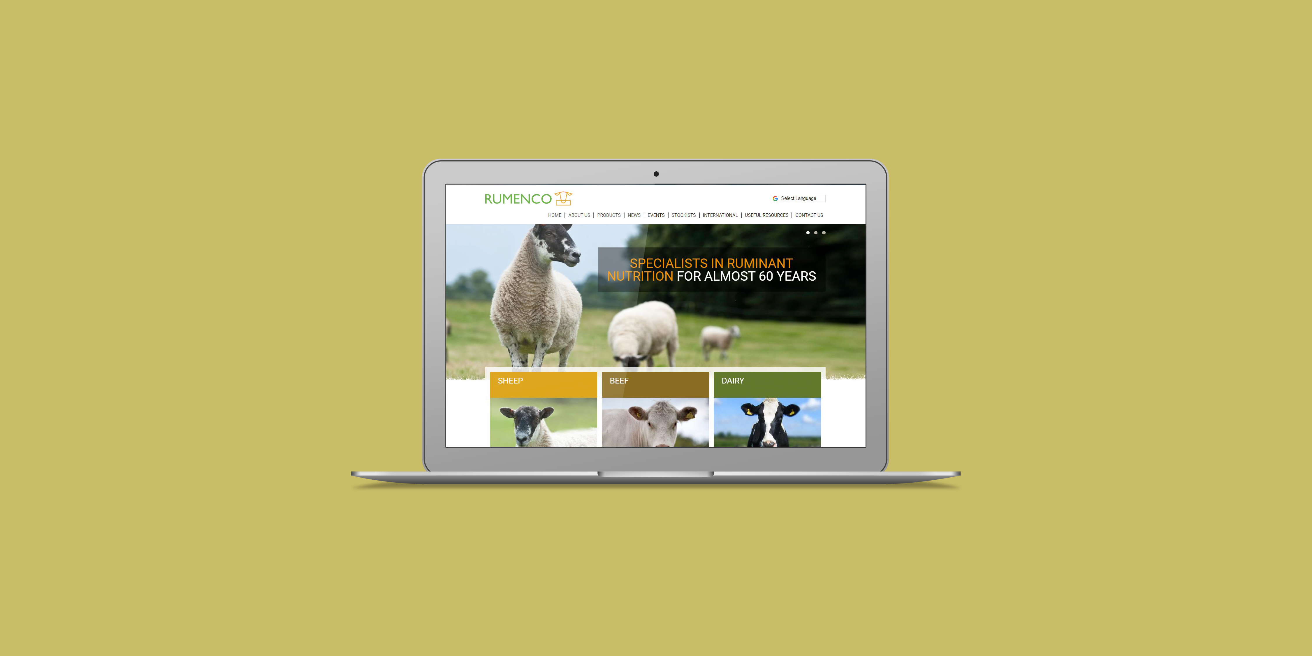 Rumenco - The Web Orchard - Web Design Shrewsbury